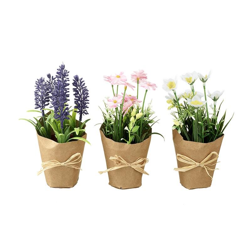 set of flowers in pots